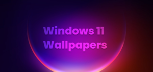 widnows 11 wall