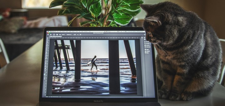 How to Generate Photos From Any Video [Step By Step]