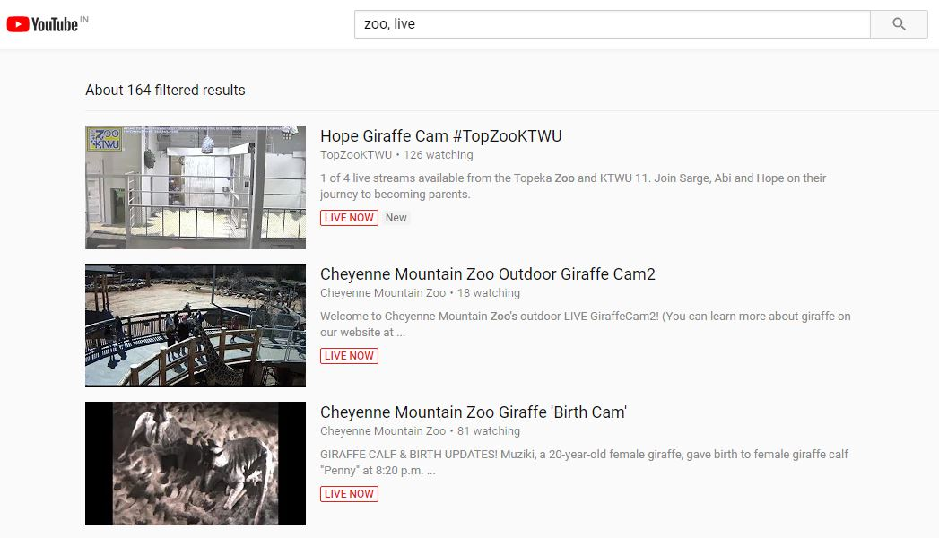 YouTube Search currently live videos
